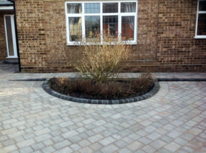 Driveway with Plant Feature